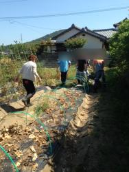 農業体験イベント開催っ(^^♪
