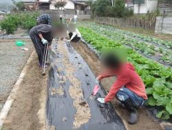 農業体験プログラム開催っ♪