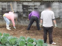 農業体験プログラムっ!