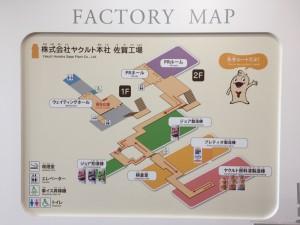 ヤクルト工場見学!