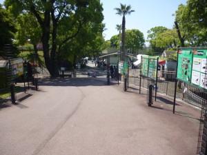 春の動物園を訪ねよう🌸