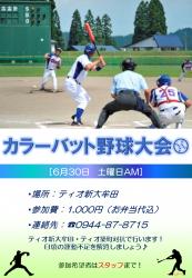 カラーバット野球大会ポスター