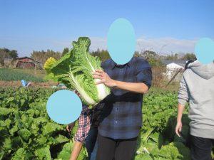 収穫した野菜でしゃぶしゃぶを食べよう🍖